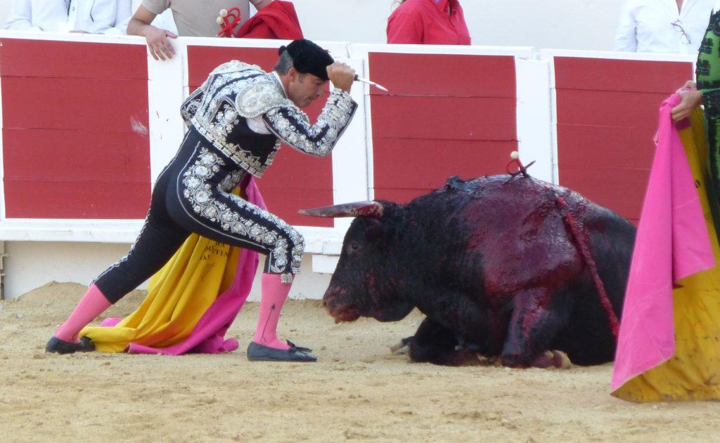 un homme qui tue un taureau