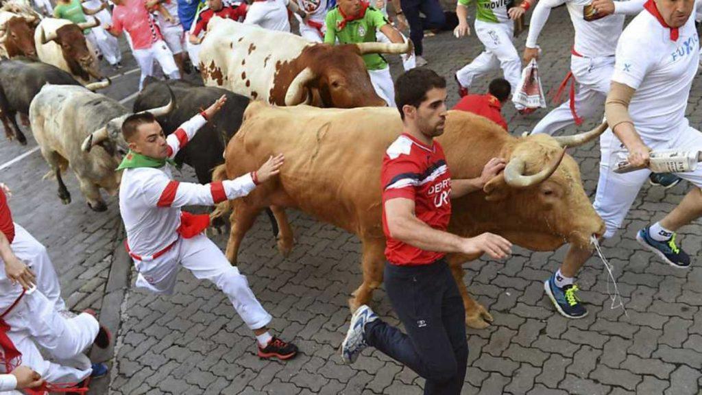 un taureau dans une foule de gens