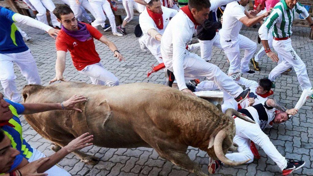 un taureau parmi la foule