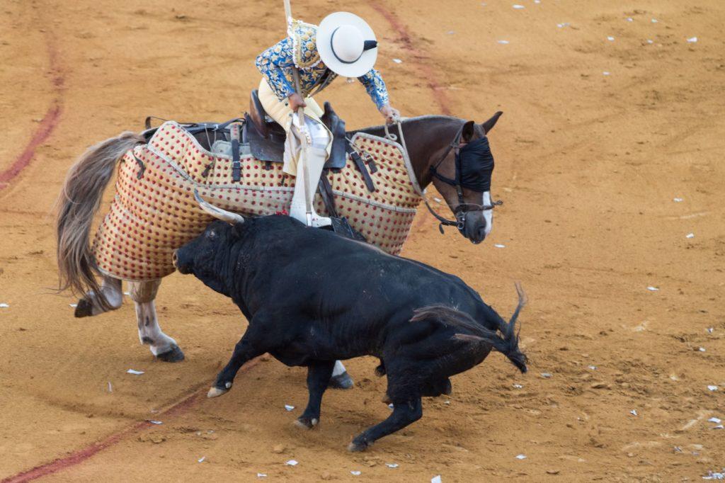 un homme à cheval et un taureau