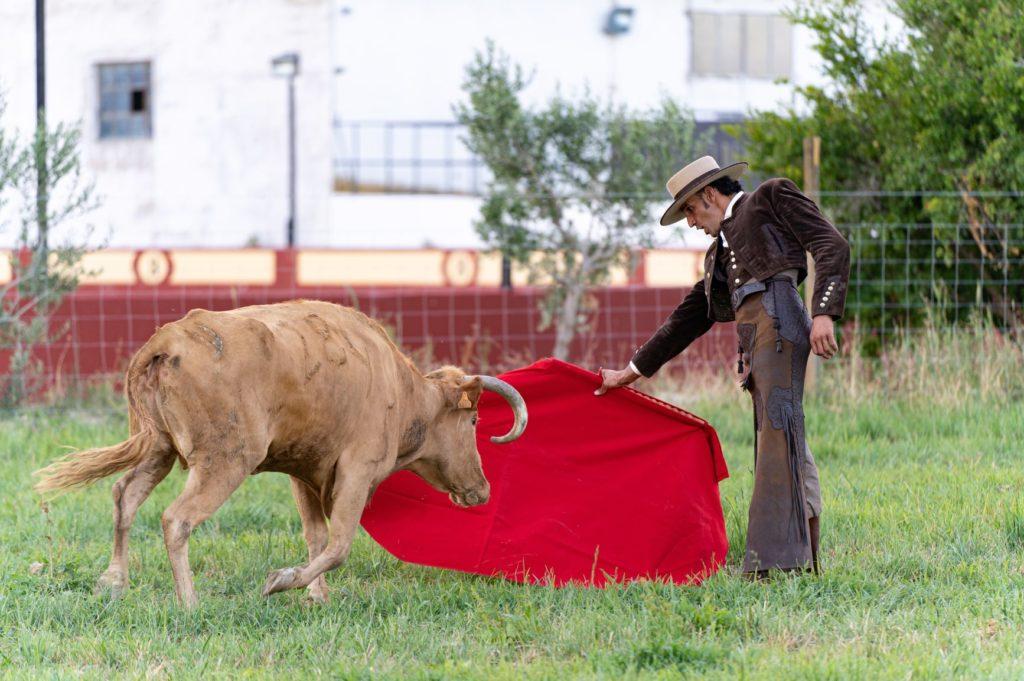 un homme avec une cape rouge devant un taureau