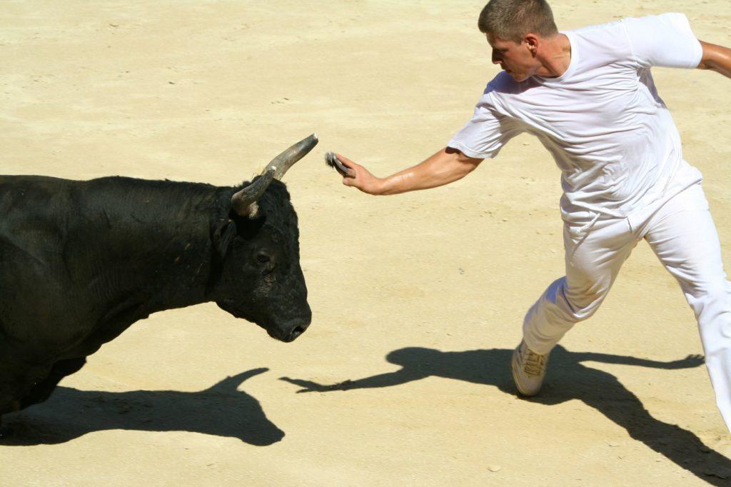 un homme et un taureau