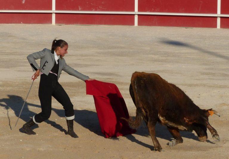 une femme et une vache