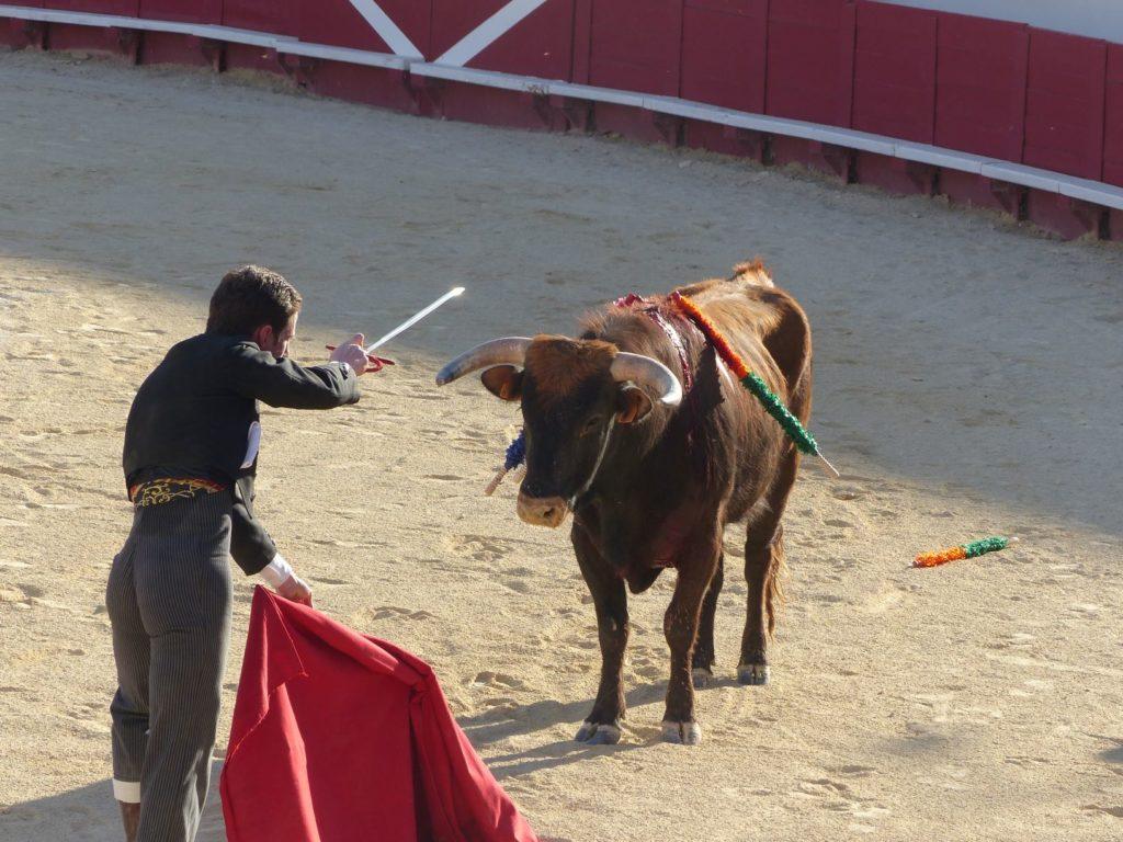 un homme et une épée face à un taureau