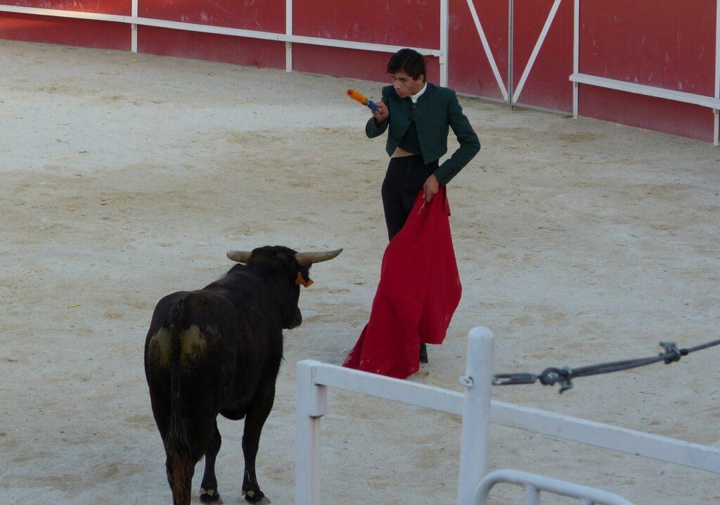 un jeune torero